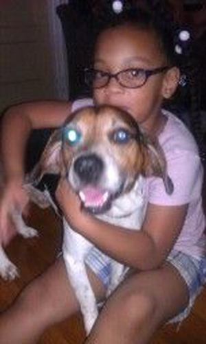 Pet Dog: Copper (Beagle)