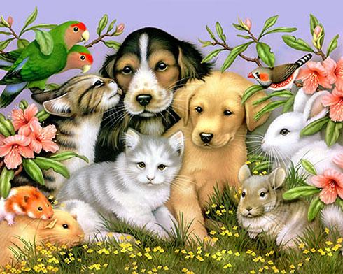 Loving Pets - poem