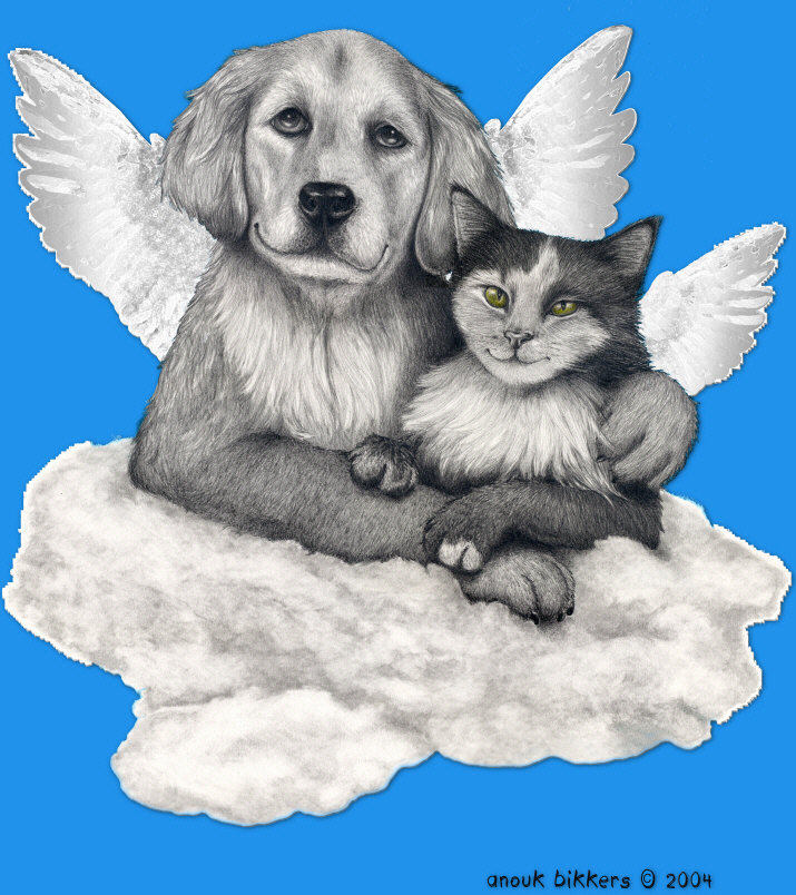 loving pet