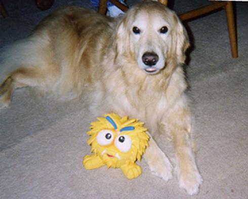 Pet Dog Jasmine – Farmingdale NJ