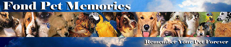 Fond Pet Memories